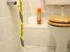 Papier toaletowy dziełem sztuki?