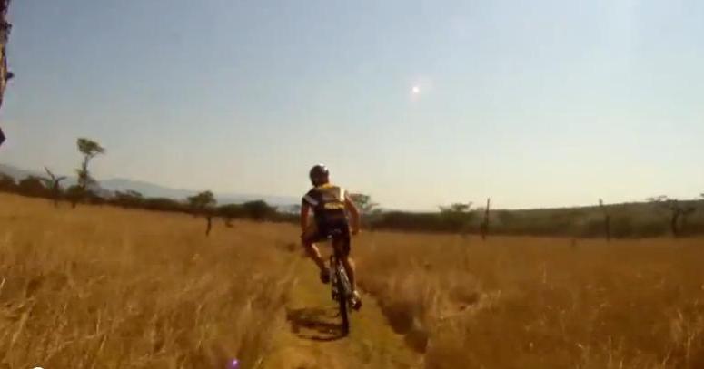 Zderzenie rowerzysty z antylopą