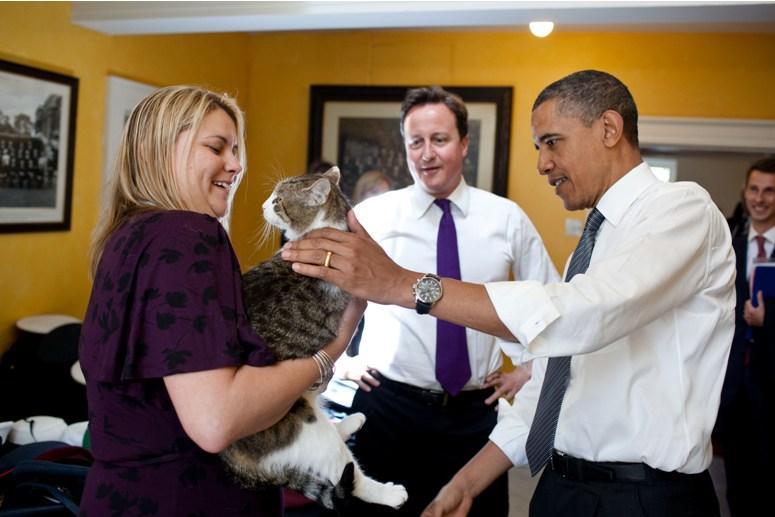Czy kot Larry z Downing Street straci posadę?