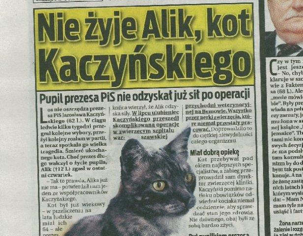 Fakt informuje o śmierci kota Kaczyńskiego