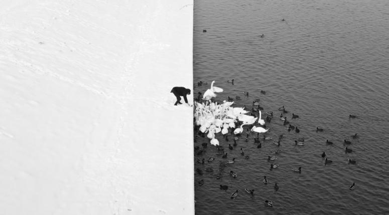 """Zdjęcie """"Zima w Krakowie"""" Marcina Raczka robi furorę na świecie"""