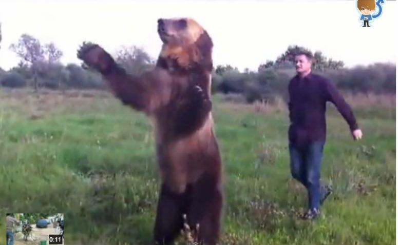 Rosjanin i niedźwiedź. Jak to się skończy?