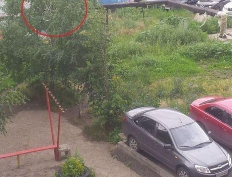 Rosja: wkrótce jego rower wylądował na drzewie